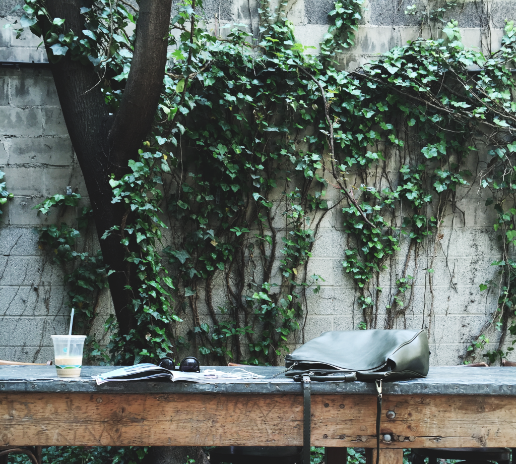 greecologies lush outdoor backyard space in little italy, new york city