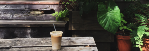 saturdays soho | coffee in a backyard oasis